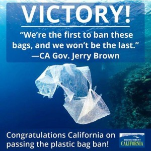 environment_california_-_jerry_brown_quote_on_plastic_bags
